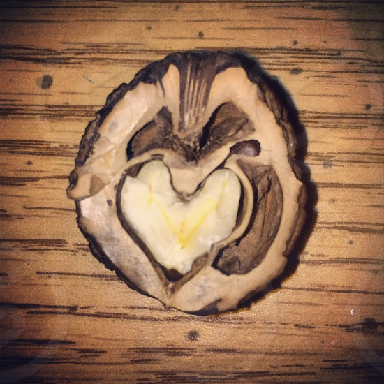 Walnut heart.  photo