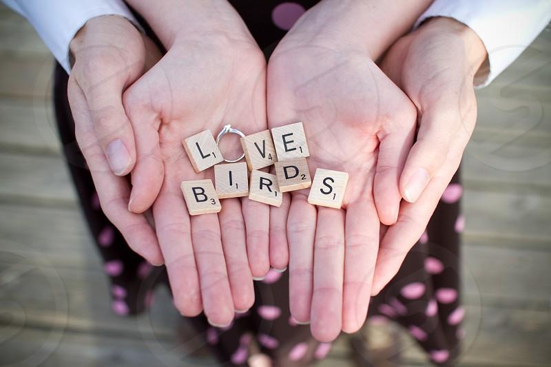 Love Birds- Engagement Photos photo