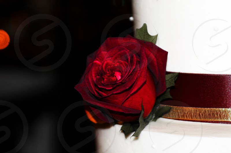 Red rose on a wedding cake photo