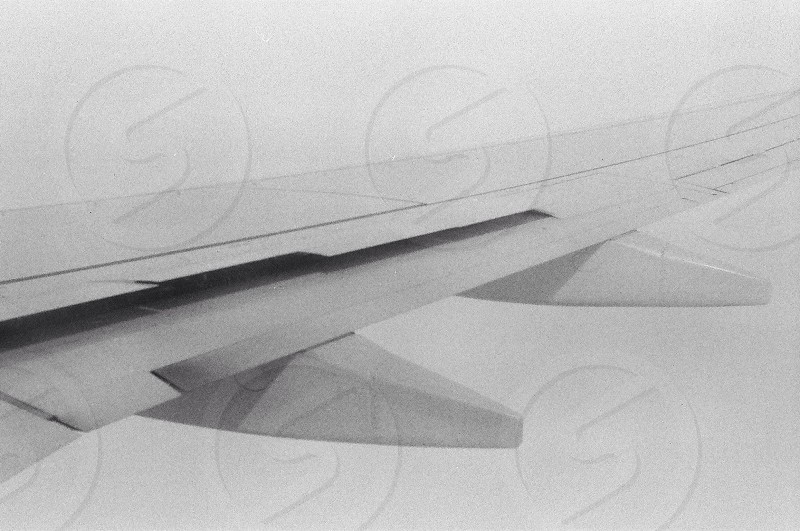 Wings through cloud. photo