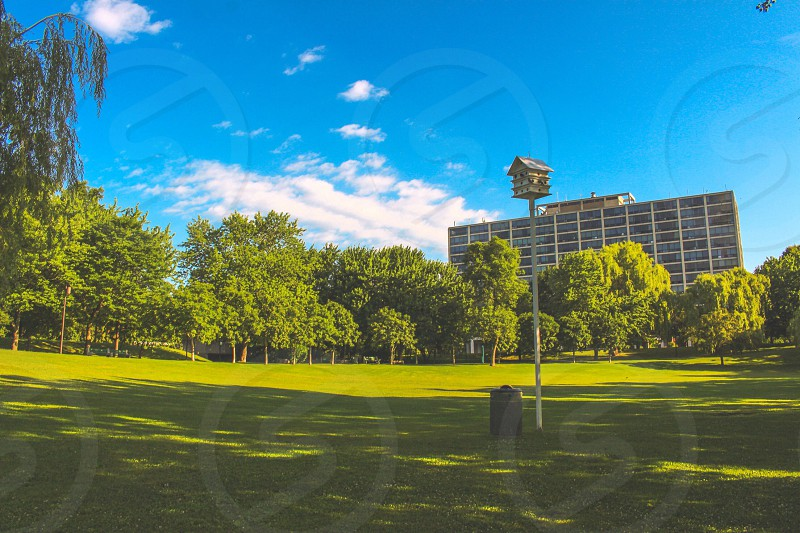 Summer vibes. Sunny Day At The Park. Montreal Canada photo