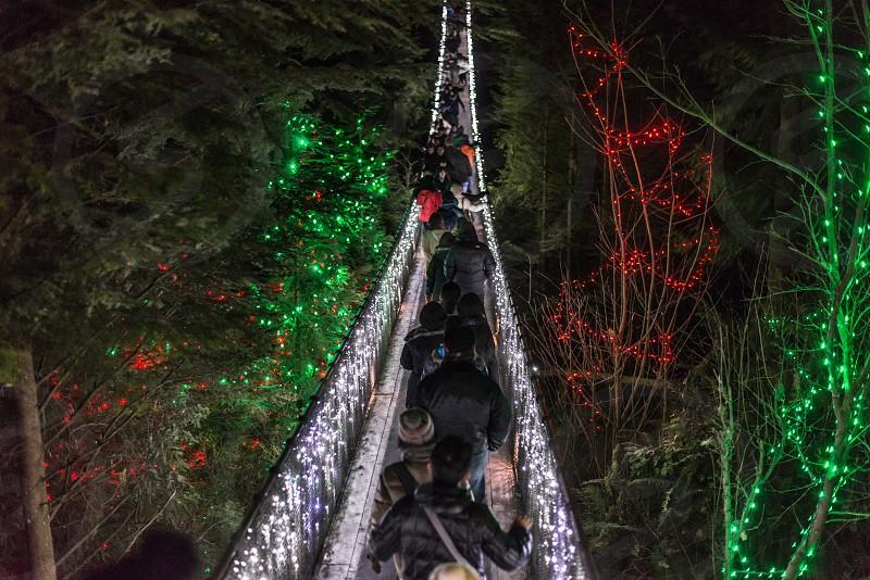 Capilano suspension bridge photo