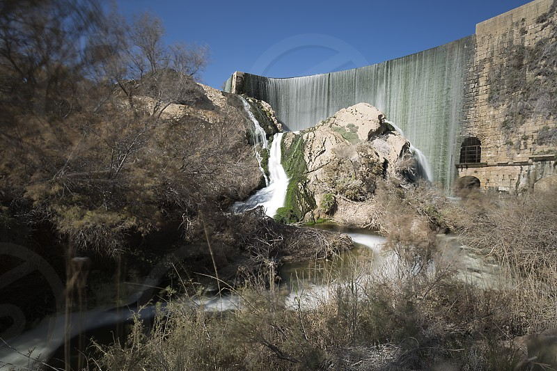 Views of the Elche swamp in winter. Province of Alicante in Spain. photo