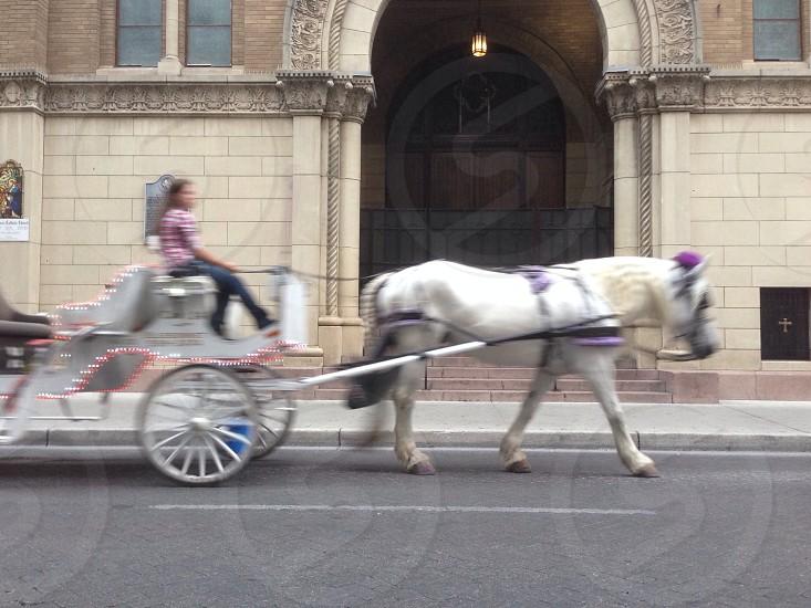 St. Mary's Church San Antonio TX photo