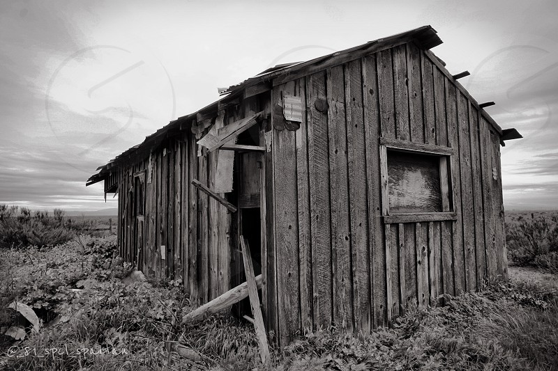 Barn mono shades of grey middle of nowhere  photo