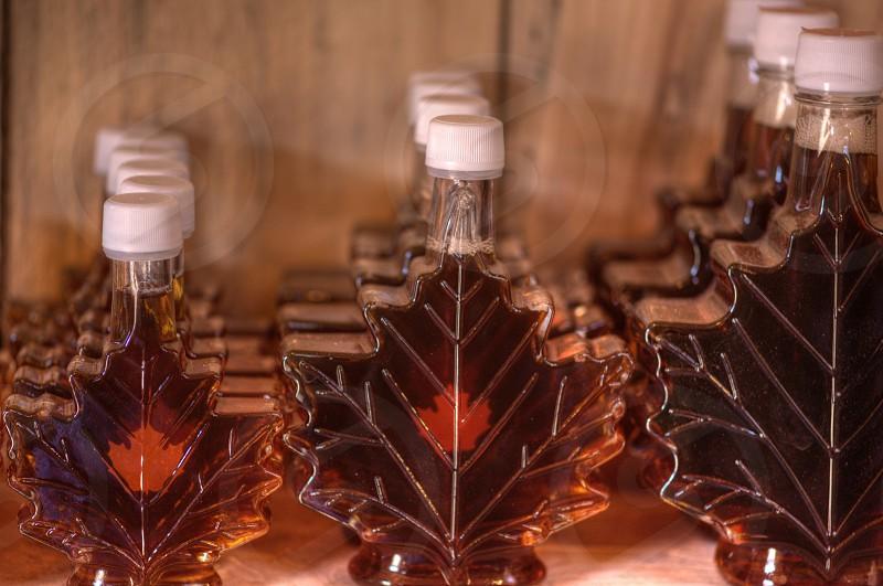 Bottled Maple Syrup photo