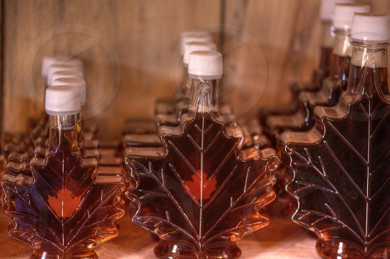 Bottled Maple Syrup ready for sale. photo