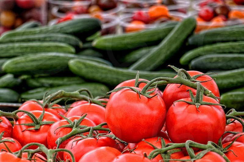 Fresh tomatoes on the vine and zucchinis photo