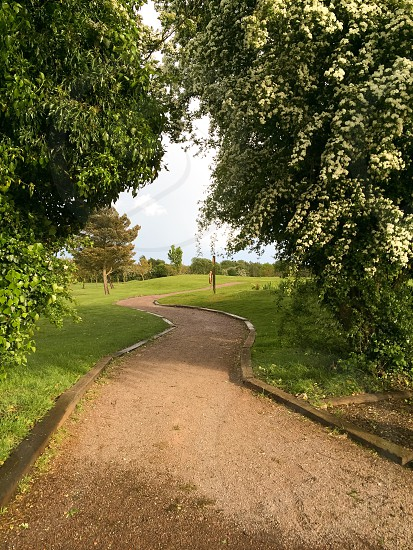 Trees golf course green path distance leaves clearing  photo