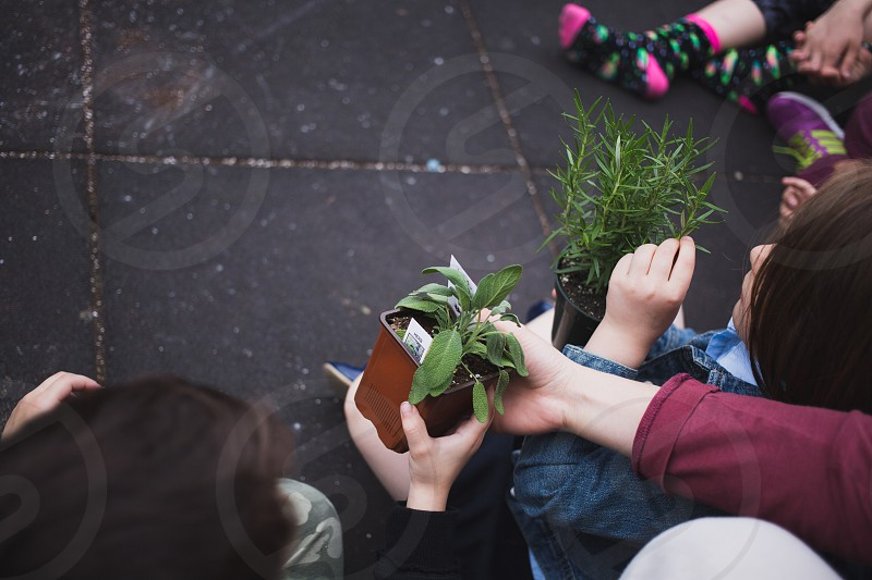 Planting with kids at afterschool photo