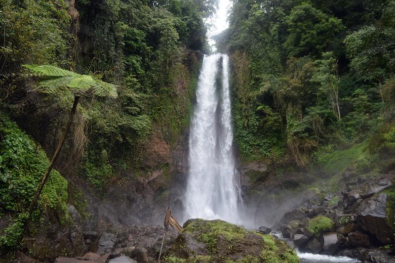 Gitgit waterfall in Bali photo