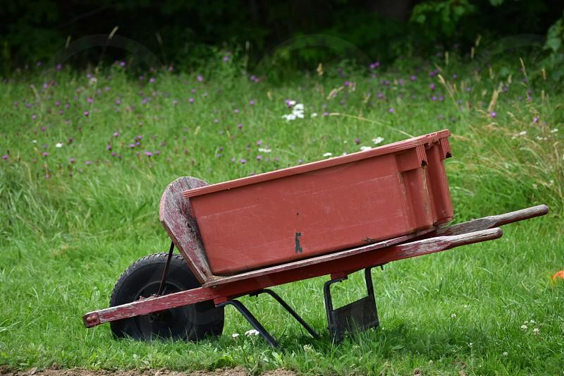 red wheelbarrow grass summer simple. photo