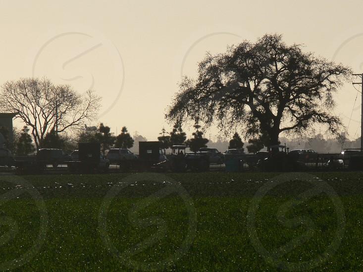 Farm fields at dusk photo