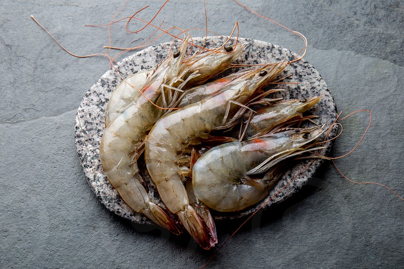 Raw whole fresh uncooked prawns shrimps on stone gray plate stone background. Top view with copy space. photo