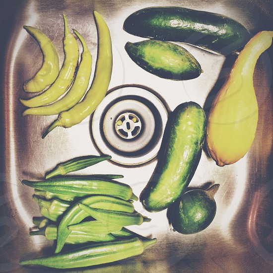 yellow green pepper cucumber squash in stainless sink photo