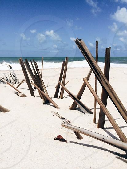 brown wood impaled on beach photo
