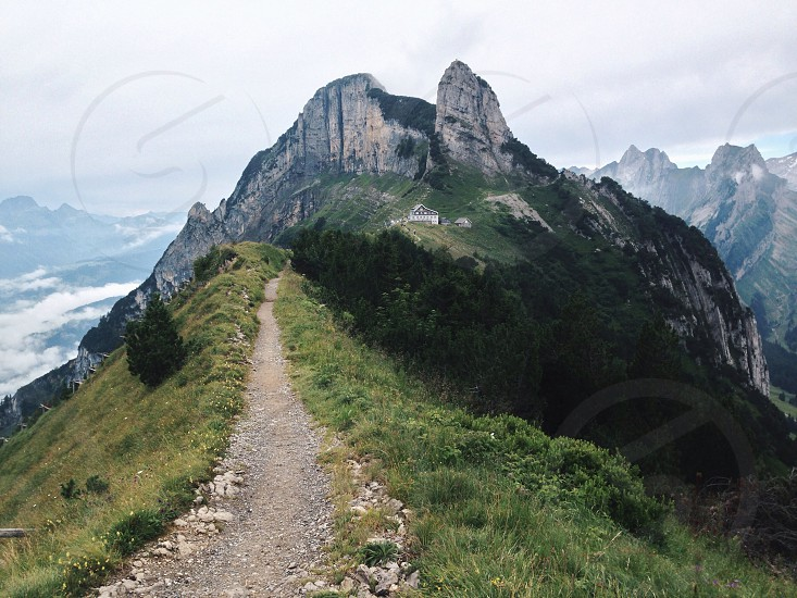stone pathway in between green grass on top of mountain photo