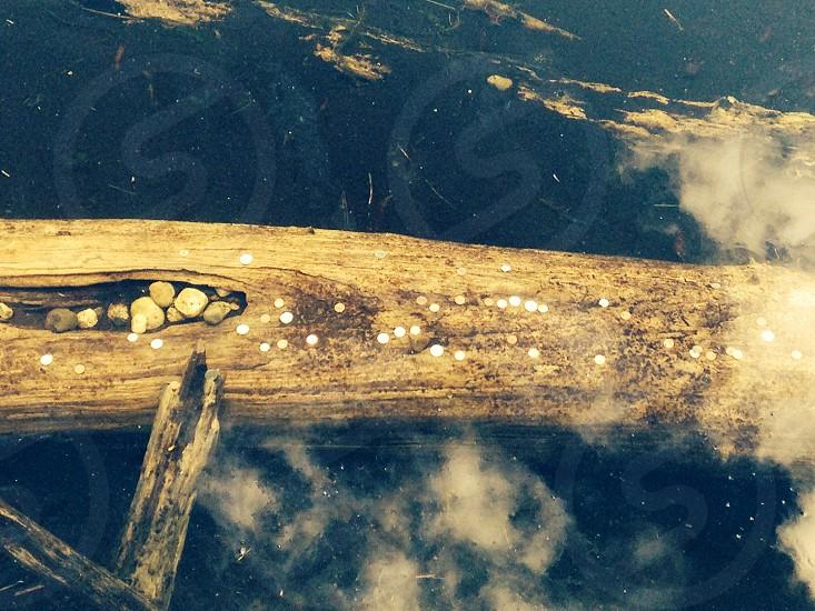 Wishing well wishing well water log coins photo