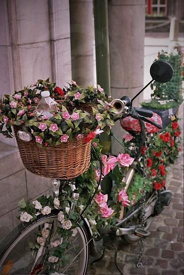 Bruges Bike. photo