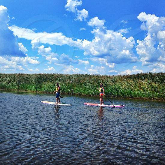 Paddle board bay beachsummer photo
