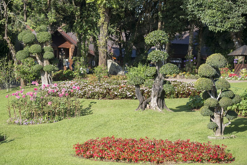 the Doi Tung Royal Villa at the village of  Doi Tung north of the city of Chiang Rai in North Thailand. photo