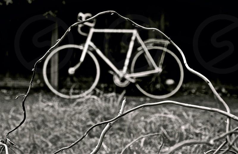 grey road bike photo
