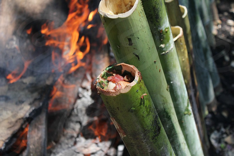 Dinner in Indonesia they create in the bamboo trees. and put it on the fire. photo