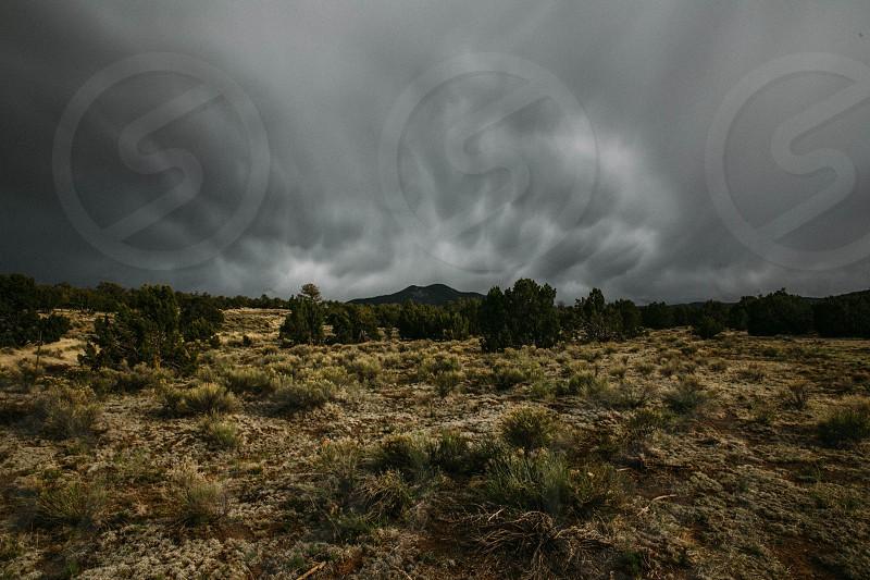 Arizona storm. photo
