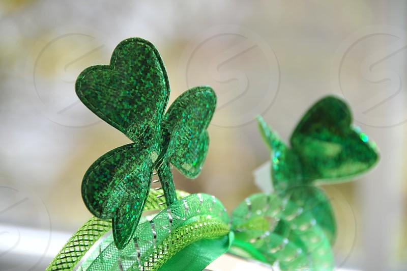 Lucky Green Shamrocks photo