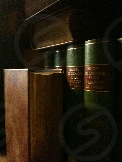 Scholarly books in the shadows.  photo