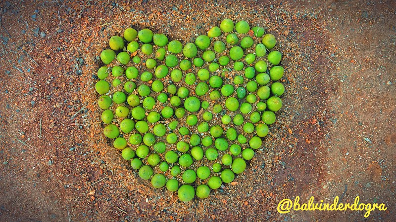 Beautiful Heart photo