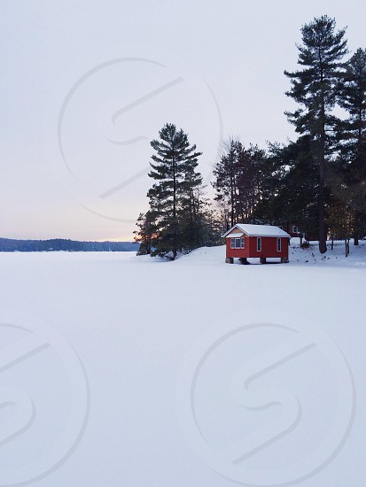 red barn house and snow road beside green tree photo