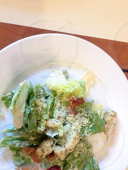 A fresh green salad plate photo