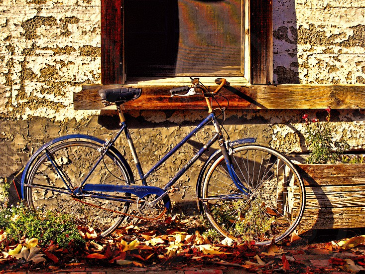 Vintage bicycle is parked neat a weathered rustic wall. photo