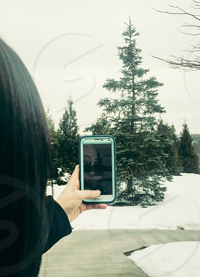 woman taking photograph of tree on white smartphone photo