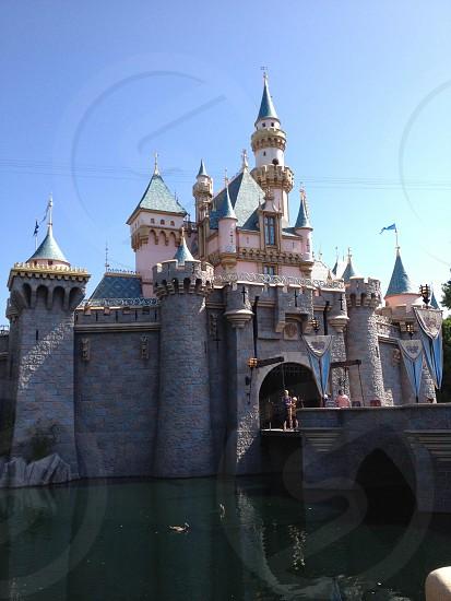 Disneyland Castle  photo