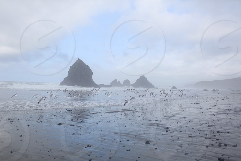 seashore and mountain mist view photo