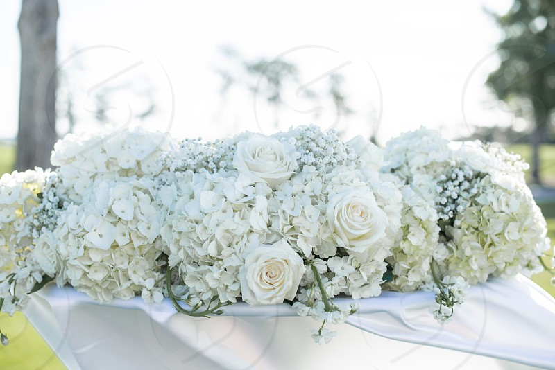 Whit roses bouquet at sweetheart table photo