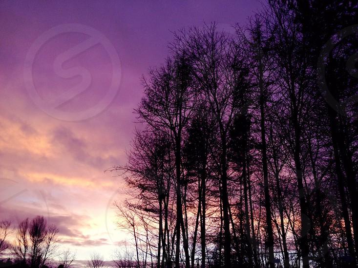 Swedish Sunset  photo