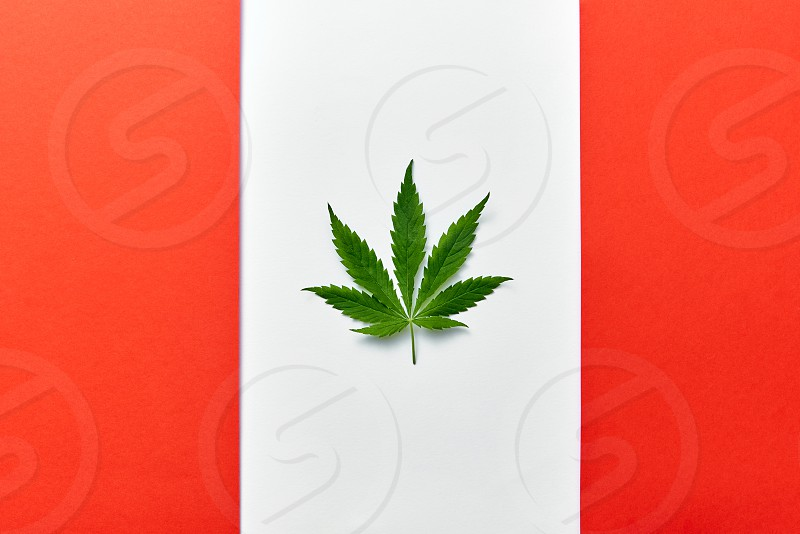 Background with red and white flag of Canada with cannabis leaf instead of maple leaf symbolizing legalize of medical marijuana in country photo