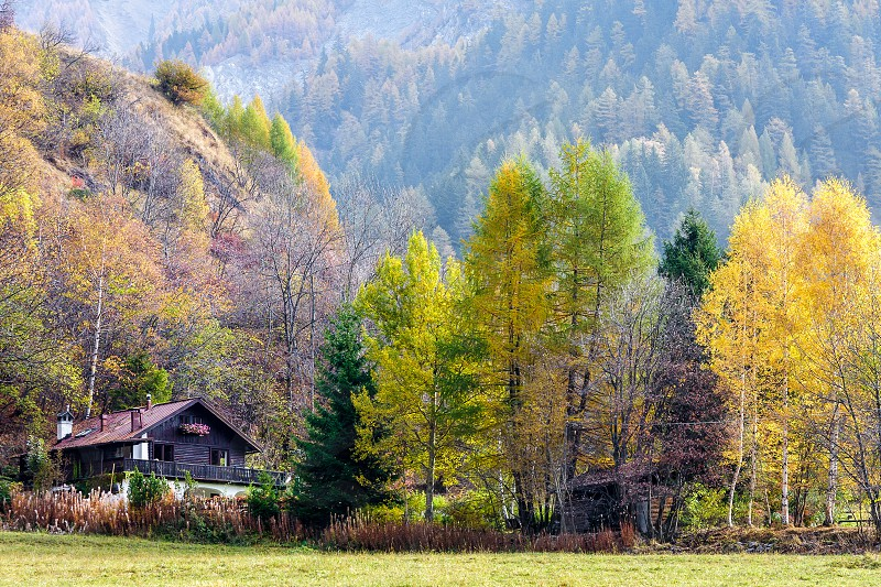 CORMAYEUR ITALY/EUROPE - OCTOBER 27 : Autumn scene showing alpine style chalet and trees in Cormayeur Italy on October 27 2008 photo