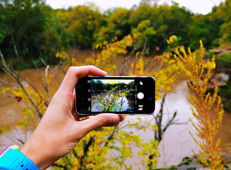 black iphone taking a photo of yellow plant photo