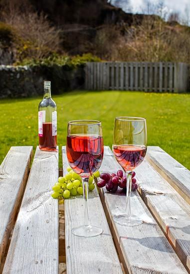 Rose Wine and Sunshine photo