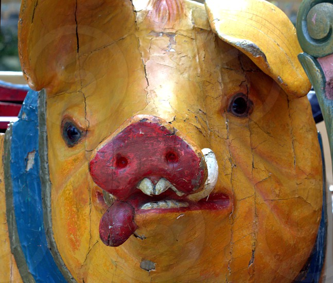 vintage object carousel pig 1800's photo