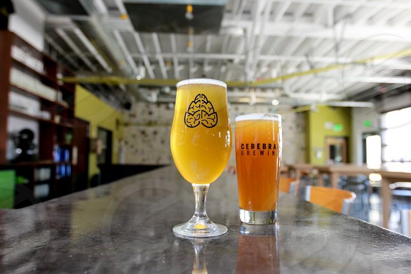 Cerebral Brewing. Entree. Beverage. Menu Selection. Denver Colorado photo