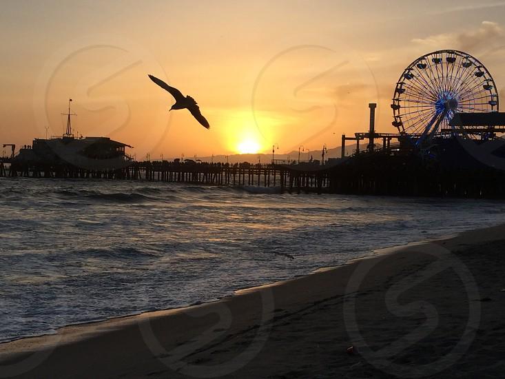 Sunset at Santa Monica photo