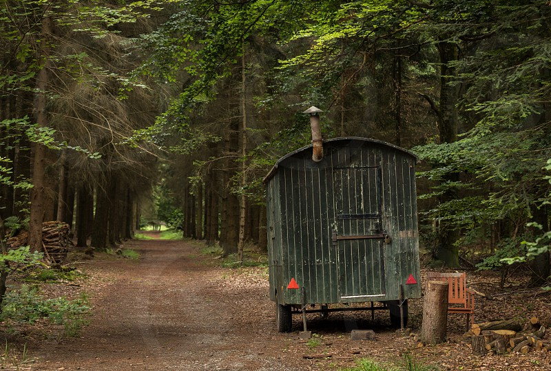 Germany historic postal transportation route to Switzerland forest trees path nature photo