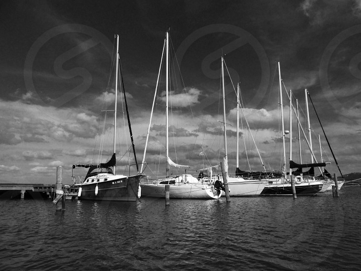 grayscale seaport photo