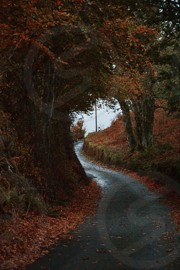 Road trip scotland highlands road autumn photo