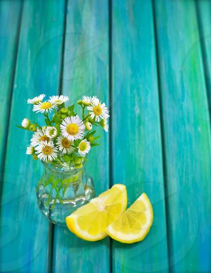 babies breath flower beside lemon photo